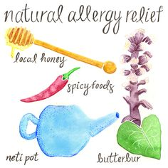 Natural Allergy Relief: Natural ways to combat springtime allergies including local honey, spicy foods, neti pots, and butterbur.