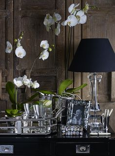 #indiajane #indiajanehome #crystallampbase #orchid #interiors #nickel Home And Living, Living Rooms, India Jane, Restaurant Interior Design, British Colonial, Restoration Hardware, Interior Design Inspiration, Storyboard, Home Accessories
