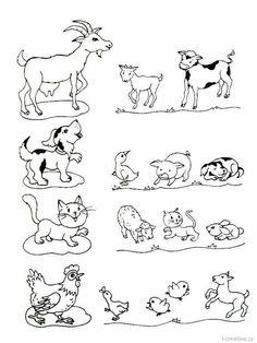 Coloriage Famille Animaux.17 Meilleures Images Du Tableau Coloriage Famille Animaux