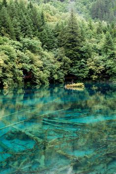 Mineral lakes (九寨溝),Sichuan province, Jiuzhaigou Valley, China