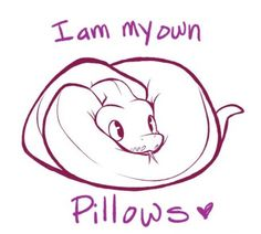 To the people who ask me how it is to have a ball Python...