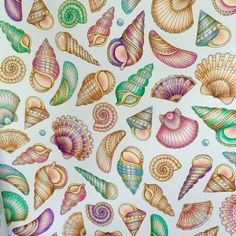 410+ Lost Ocean Coloring Book Shell Free Images