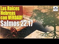 65 Estudios Biblicos Ideas Magog King John Biblia