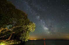 The Milky Way over Amherst Island and Lake Ontario. I used a flash light to light up the giant Willow trees. Time Lapse Photography, Nature Photography, Framed Prints, Canvas Prints, Art Prints, Thing 1, Star Art, Milky Way, Far Away