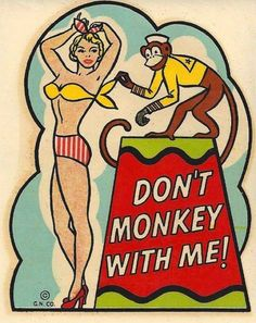 Don't Monkey With Me!