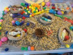 Spring Sensory bin with bird seed, birds nests, birds, worms, clothespins as birds beaks, tweezers, mini plastic eggs, pom poms, etc.
