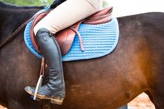Sleek and stylish American Equus Stirrups! Innovative and completely customizable! Feel free to message me questions about their products. Click the pin to see more of their awesome products!    #horse #americanequus #customstirrups  #innovative #perfect #chosenrider #ae #americanmade #madeintheusa #stirrups #englishtack #showjumping #pessoa #pessoausa #pessoagenx2 #ariat #ariatinternational #equestrian #equestrianphotography #artsy #equinephotography