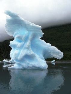 The Glaciers of College Fjord
