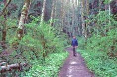 Hiker_North-Lost-Lake_Trail_Larrabee_Park.jpg (260×172)