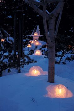 You might have seen these ice globes, lanterns, and sculptures at the City of Lakes Loppet or along the boulevard in the Linden Hills business district. Christmas Yard, Winter Christmas, Christmas Lights, Backyard Ice Rink, Diy Xmas, Linden Hills, Snow Sculptures, How To Make Lanterns, Snow Fun