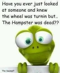 have you ever looked at someone and knew the wheel was turning but the hamster was dead