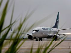 Westjet employees are leading a drive to join CUPE Flight Attendant, Join