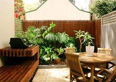 linda parede de bambu e plantas!