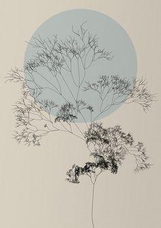 Choose art that inspires travel. Nature of code by Diana Lange. Illustrations, Illustration Art, Herbs Image, Beige Wallpaper, Code Art, Ligne Claire, Buddha Art, Generative Art, Grafik Design