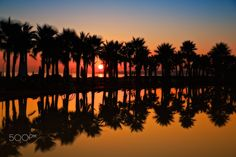 """Sunset - <a title=""""https://www.facebook.com/RicardoAlvesPhotography"""" href=""""https://www.facebook.com/RicardoAlvesPhotography"""">https://www.facebook.com/RicardoAlvesPhotography</a>"""