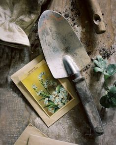 9 Irresistible Cool Tips: Garden Tool Crafts Planter Boxes garden tool shed diy.Garden Tool Display Watering Cans. Garden Trowel, Garden Tools, Garden Sheds, Garden Gate, Permaculture, Cactus Plante, Neville Longbottom, Seed Of Life, Morris