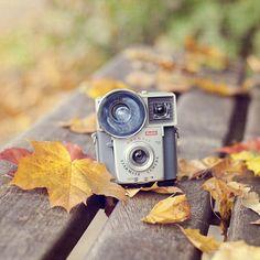 Fall camera. +