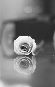bfc66add64c8 Black and white Beautiful Moments