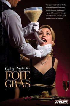 This is how fois gras is made from goose or ducks.  They are force fed fat so their livers are fatty.  How would you like it? from PETA