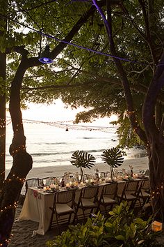 destination weddings in Costa Rica// Design by Tropical Occassions www.tropicaloccasions.com/ Photography by Zach Stovall