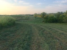 South property field