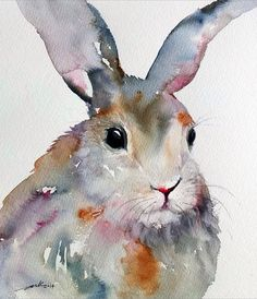 Multi-Coloured Rabbit~ Arti Chauhan