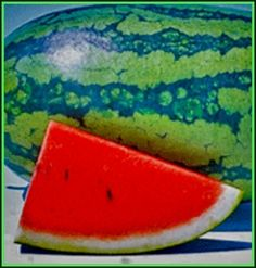 Watermelon: The Fun To Eat Healthy Treat