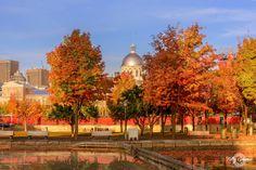Montreal, Taj Mahal, Building, Painting, Travel, Art, Art Background, Viajes, Buildings