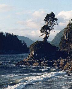 Tofino,Vancouver Island, BC