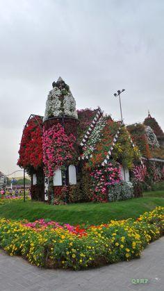 Dubai Miracle Garden by: Q8HP,,,