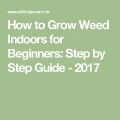 Weed Growing A step by step DIY beginner's guide. Grow Weed even if you've never grown anything before! EVERYTHING from seed to weed. Hydroponic Gardening, Hydroponics, Growing Weed Indoors, Cannabis Edibles, Cannabis Growing, Holistic Medicine, Medical Marijuana, Step Guide, Healthy Choices