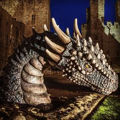 Currently at #harleccastle #dragons are amazing -x-