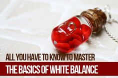 All You Have to Know to Master the Basics of White Balance | Photodoto