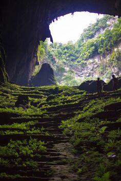 The terraced gardens of Hang Son Doong #Garden #Cave #SonDoong