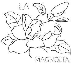 Louisiana Magnolia | Flickr - Photo Sharing!