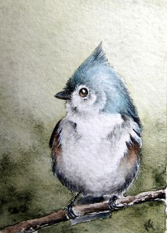 beautiful birdie watercolor by Madelaine Fedorowich