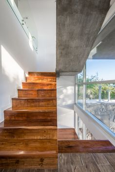Gallery of 367 House / Mateo Ponce de León - 3