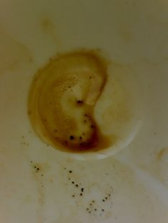Vincent van Gogh was in my Coffee