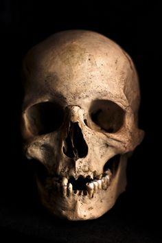 Crânio, Humano, Cabeça, Esqueleto, Óssea, Horror
