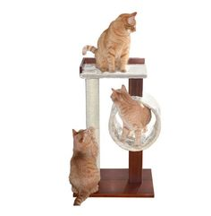 Cat Tree Scratching Post House Pet Furniture By PetFusion Modern Activity NEW…