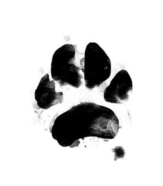 Dog icons: love the messy texture. Would love to see it in an earthy tone so it looks like mud Dark Wallpaper Iphone, Dog Icon, Pet Paws, Cat Tattoo, Watercolor Print, Tattoo Stencils, Instagram, Impression, Tatoos