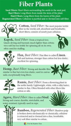 Common Types of Fiber Plants: Cotton, Kapok, Flax, Fibre Textile, Art Textile, Textiles, Bamboo Planter, Types Of Fibres, Types Of Yarn, Spinning Wool, Hand Spinning, Info Board