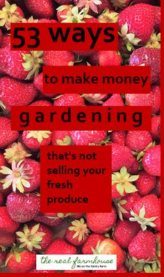 Online opportunities, classes, potpourri, pictures, coaching. Huge list of ways to make money with your garden.