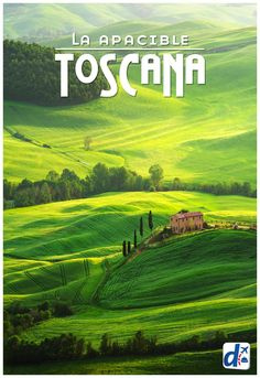 Viajar a la Toscana es sumergirse en hermosos paisajes de campiña, pueblos… Places Around The World, Travel Around The World, Around The Worlds, Places To Travel, Travel Destinations, Places To Visit, Positano, Wonderful Places, Beautiful Places