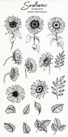 Sunflower Coloring Pages, Sunflower Drawing, Sunflower Flower, Sunflower Tattoos, Sunflower Tattoo Design, Cute Tattoos, Unique Tattoos, Small Tattoos, Line Art