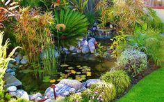 Water Garden Design By Mike Garcia Redondo Beach - Landscaping Manhattan Beach Pond Design, Landscape Design, Garden Design, Backyard Water Feature, Ponds Backyard, Pond Landscaping, Landscaping With Rocks, California Native Plants, Natural Pond