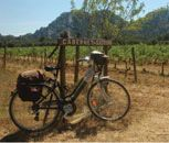 Loire Valley Bike & Barge Cycling Holiday | Loire Valley biking tours and vacations France