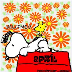 New Month, Hippie Art, Peanuts Snoopy, Timeline Photos, Woodstock, Holidays And Events, Type 1, Peace, Facebook