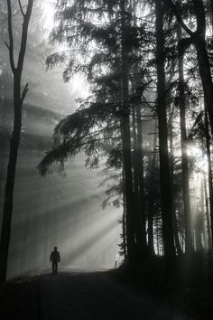 rayons de soleil...THERE IS SOMETHING AWESOME ABOUT SEEING A GREAT PIC IN BLACK AND WHITE....AND THIS ONE IS A GREAT PIC I THINK.....LOVE THIS ONE