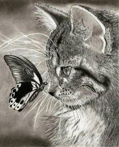 Realistic cat drawing, realistic drawings of animals, animal pencil drawings , Realistic Animal Drawings, Pencil Drawings Of Animals, Animal Sketches, Drawing Animals, Drawings Of Cats, Dragon Drawings, Realistic Eye, I Love Cats, Crazy Cats